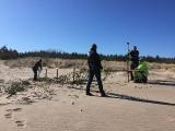 15.04.2019. Kāpu preterozijas pasākumi - priežu zaru sētiņu uzstādīšanas darbi Mangaļsalā